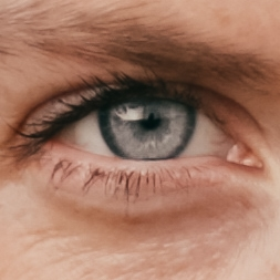 Annie Nürnberg Auge